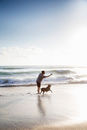 Mid adult man and dog, playing together on beach