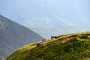 Rural landscape, Caucasus, Svaneti, Georgia
