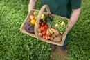 Farmer carrying organic vegetables in basket for delivery, c