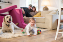 Baby boy and pet dog playing in fort made from sofa cushions