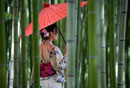 woman standing in a bamboo grove