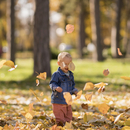 Boy playing with dried leaves on grassy field at park during sunny day