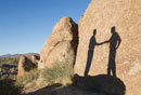 Shadow of businessmen shaking hands in desert