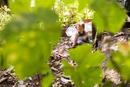 Caucasian baby girl wearing fairy wings in garden