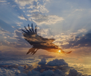 Silhouette of eagle flying in dramatic sunrise sky