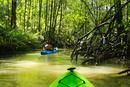 Hispanic woman rowing kayak on river