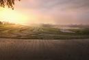 Rice fields in remote landscape
