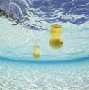海に浮いたレモン