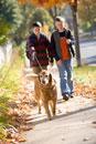Two boys walking a dog