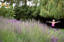 Woman in yoga pose near lavender field