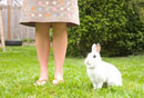 Young woman and rabbit sitting in lawn