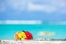 グアムの海とハイビスカス