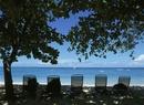 海岸のいすと木