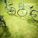 芝生の上の3台の自転車