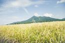 秋の田園と磐梯山
