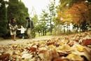 秋の公園を歩くファミリー
