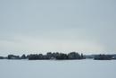 冬の曇天と木々と民家