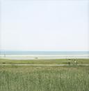 海と海辺を歩くカップル