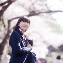 桜を見上げる女子中学生