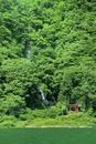 新緑の最上川と白糸の滝