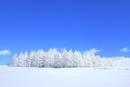 霧ケ峰高原 雪原と霧氷林