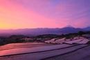 棚田より甲府盆地と朝焼けの富士山