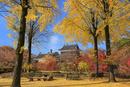 上田城 北櫓と紅葉
