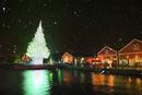雪降るはこだてクリスマスファンタジー