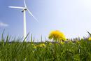 Wind turbine in field of spring dandelions