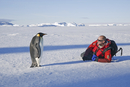 A man lying on the ice, near a motionless emperor penguin