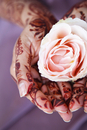 henna painted hands holding a rose