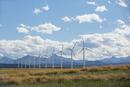Wind turbines in sunny rural field