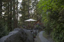 Patio umbrella and string lights on deck cabin in woods