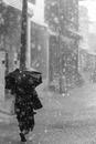 Woman with umbrella walking in heavy rain, Ravanasamudram, Tamilnadu, India