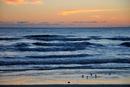 Sunrise over atlantic ocean, New Smyrna Beach, Florida, USA
