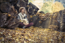 Portrait of young woman sitting in autumn forest and holding owl mask, Parco Burcina Natural Reserve, Pollone, Italy