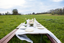 Set table in middle of field