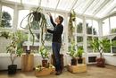 Man tending to aloe plant