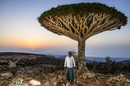 Yemenite man standing in front of a Socotra Dragon Tree or