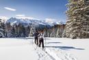 Ski tourers ascending the Cima Bocche at Passo Valles