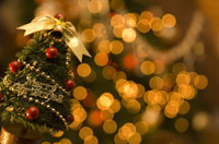 小さなクリスマスツリーとイルミネーション