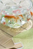 金魚と団扇