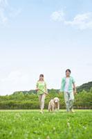 公園を散歩するカップルと犬