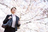 桜の木の下に立っている新入社員