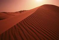 砂漠 07800011686| 写真素材・ストックフォト・画像・イラスト素材|アマナイメージズ