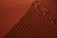 風紋 07800011687| 写真素材・ストックフォト・画像・イラスト素材|アマナイメージズ