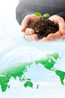 世界地図の芝生と新芽を持っているビジネスマンの手