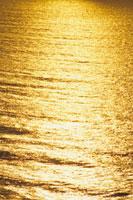朝日を反射している海面