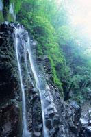 小川谷廊下の滝