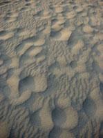 砂浜と風紋